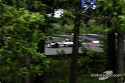 Ralf Schumacher, not out, woods