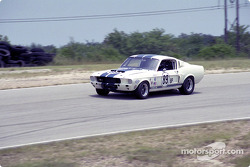 Greg Reynolds, #89 Shelby GT350