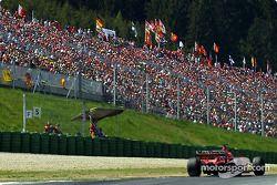 Michael Schumacher ve tifosi, always great number Austria