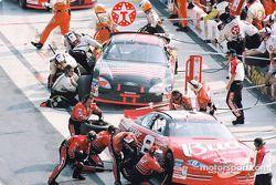 Stands : Dale Earnhardt Jr et Ricky Rudd