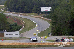 Race action: Emanuele Pirro leading the field