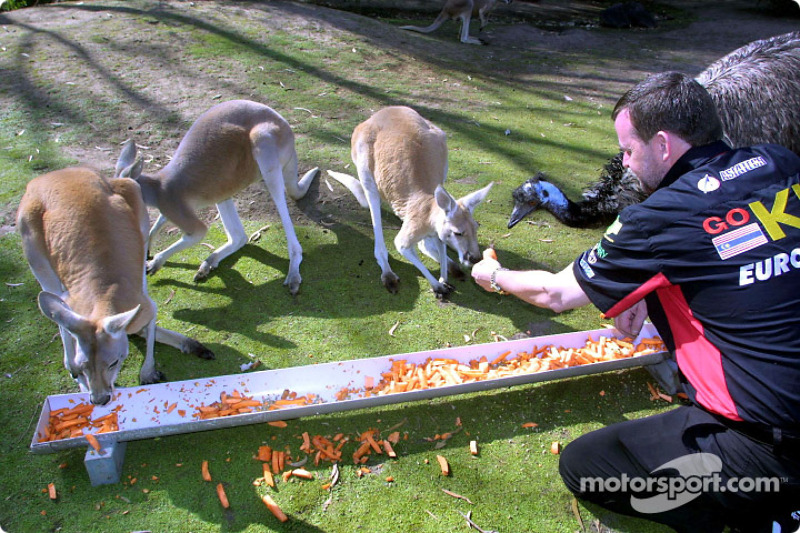 Visit at the Melbourne Zoo: Paul Stoddart feeding the kangooroos