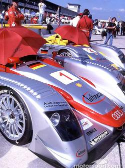 Les Audi sur la grille