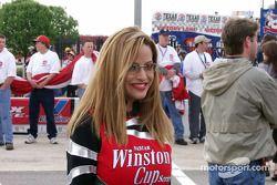 La encantadora Miss Winston Cup