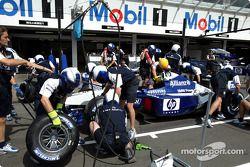 Entraînement à l'arrêt de ravitaillement pour Williams-BMW