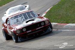 GT1 class qualifying: David Fershtand