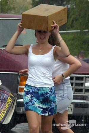 Box umbrella