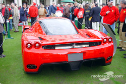 Ferrari Enzo: rear