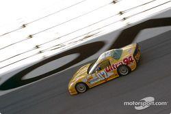 #02 Powell Motorsport Corvette: Mike Weinberg, Stu Hayner
