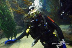 Justin Wilson zwemt met haaien in Melbourne aquarium