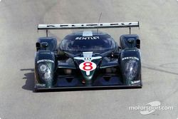 Rinaldo Capello in the Bentley Speed 8 Prototype
