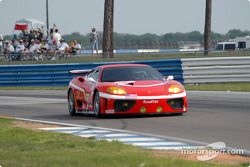 JMB Racing USA / Team Ferrari Ferrari 360 Modena: Stephen Earle