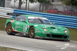 #0 Team Olive Garden Ferrari 550 Maranello: Emanuele Naspetti, Domenico Schiattarella, Johnny Cecotto