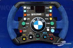 Steering wheel, Williams-BMW FW25