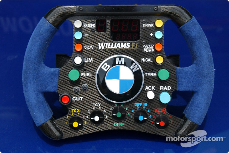 Steering wheel of the Williams-BMW FW25