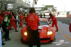 #80 Veloqx Prodrive Racing Ferrari 550 Maranello: Anthony Davidson, Kelvin Burt, Darren Turner
