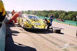 Arrêt au stand pour la #8 G&W Motorsports BMW Picchio DP2 de Darren Law et Patrick Huisman