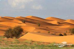 Spectaculaires dunes