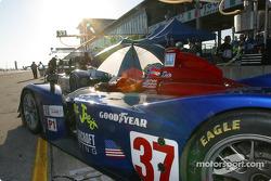 Colin McRae et le co-pilote Nicky Grist célèbrent la victoire