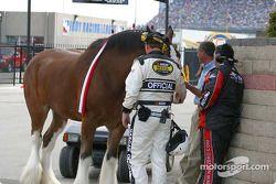 Un officiel de la NASCAR vérifie la puissance du moteur