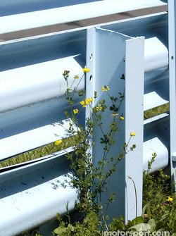 Le rail à la sortie du virage 7