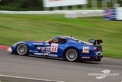 Tim Wiens (n°33 Dodge Viper Comp Coupe)