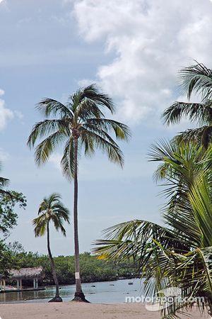 La plage à Florida Bay