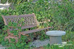 Un banc dans le parc