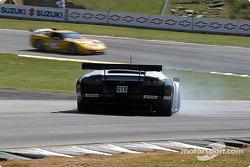 #6 Krohn-Barbour Racing Lamborghini Murcielago R-GT: Tracy Krohn , Scott Maxwell
