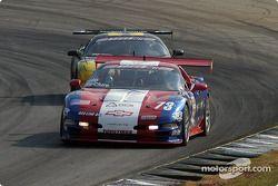 Phil McClure (Chevrolet Corvette ZO6 n°73)