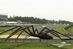 The famous spider at Barber Motorsports Park watches the race action