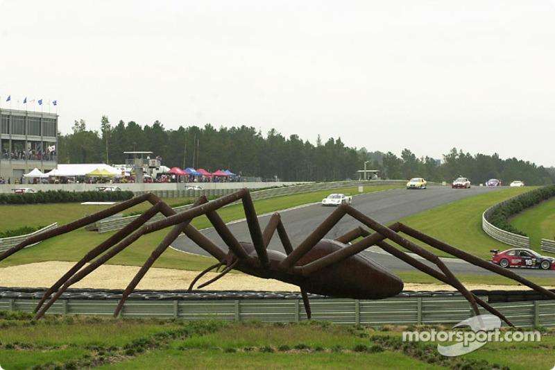 Barber Motorsports Park >> The Famous Spider At Barber Motorsports Park Watches The