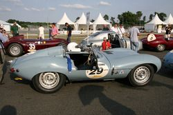 #29 Jaguar D Type 1955: Stefan Ziegler, Robert Newall