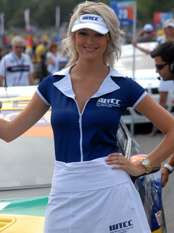 Tom Coronel's grid girl