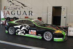 #75 Jaguar RSR Jaguar XKRS