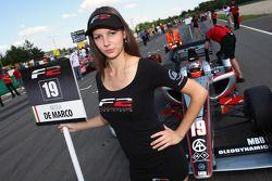 Nicola de Marco on the grid
