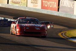 #31 Marsh Racing Corvette: Eric Curran, Boris Said