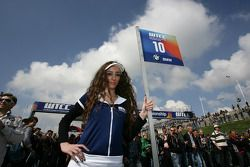 Grid girl of Augusto Farfus BMW Team RBM BMW 320si