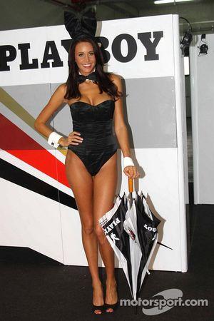 Красивая промо-девушка команды Playboy LCR Honda MotoGP