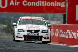 David Reynolds, Toll Holden Racing Team
