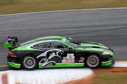 #33 Jaguar RSR Jaguar XKRS: Butch Leitzinger, Tomy Drissi, Andy Wallace
