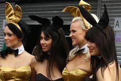Playboy bunnies in de paddock
