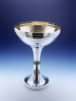 World Rally Championship Driver's Trophy