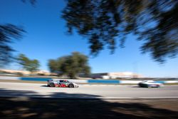 #40 Robertson Racing Doran Ford GT Elan Power: David Robertson, Andrea Robertson