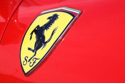 Ferrari shield