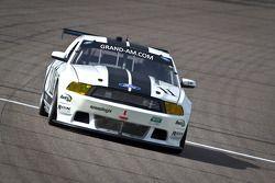 #11 TPN Racing/Blackforest Ford Mustang: Ian James, Tom Nastasi