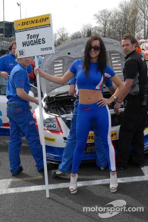 Tony Hughes gridgirl