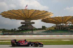 Daniel Ricciardo piloto de prueba, Scuderia Toro Rosso