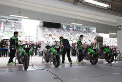 Team Green, Box, Atmosphäre