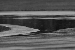 Flaque d'eau au virage Senna